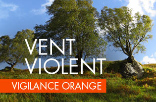 Alerte météorologique Orange - vents