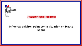 Influenza aviaire : point de situation